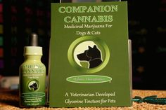 CARSON CITY, Nev. — Pets might soon be able to use pot under a bill introduced Tuesday in the Nevada Legislature. Democratic Sen. Tick Segerblom is sponsoring the measure that would allow ani…