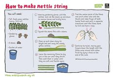 Make nettle string