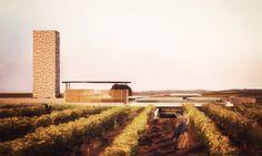 RAZVAN BARSAN + PARTNERS Vineyard, Country Roads, Architecture, Outdoor, Arquitetura, Outdoors, Vine Yard, Vineyard Vines, Outdoor Games