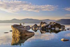 Bonsai Rock at Dusk - Lake Tahoe USA [CC-By Steve Dunleavy]