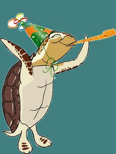 turtle decorations for classroom Turtle Birthday Parties, Turtle Party, Sea Turtle Pictures, Belated Birthday Card, Cute Turtles, Sea Turtles, Turtle Time, Georgia, Tortoise Turtle