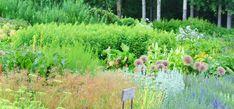 Vuoroviljely ja kasvikumppanit. Tietyt kasvit viihtyvät erityisen hyvin vierekkäin. Vaikutus voi johtua useista tekijöistä.