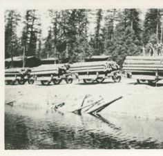White pine logs :: North Pend Oreille Heritage