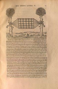from: Gonzalo Fernández de Oviedo y Valdés. L'histoire Naturelle Et Generale Des Indes: Isles, Et Terre Ferme De La Grande Mer Oceane. Translated by Jean Poleur. Paris: de l'imprimerie de Michel de Vascosan, 1556