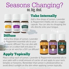 Young Living Essential Oils for every season.. Breathing easy as I enjoy the…