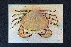himynameisphilip is offline Crab Art, Posca, Crabs, Original Paintings, Fish, Fantasy, The Originals, Image, Pisces
