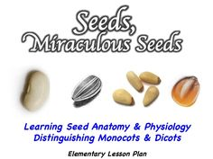 Elementary science lesson. Follow link for free lesson plan, PowerPoint, and activity sheets.