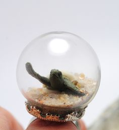 sea turtle hatching diorama ring - real sand snowglobe ring by Chutzpahs on Etsy https://www.etsy.com/listing/158301772/sea-turtle-hatching-diorama-ring-real