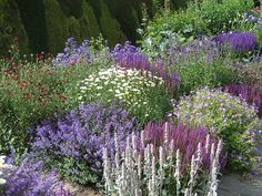 Town Place Garden: This stunning garden is open as part of the National Gardens Scheme Backyard Flowers, Plants, Cottage Garden, Country Gardening, Garden Wall, Outdoor Gardens, Garden Borders, Garden Planning, Beautiful Gardens