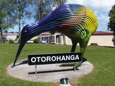 El kiwi, uno de los símbolo de Nueva Zelanda