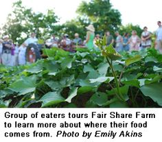 Cultivate Kansas City : 2013 Oct-Nov Newsletter : Get to know your food; The Kansas City Food Circle levels of assurance...