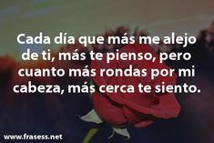 Frases para Enamorar y Conquistar a una Mujer - Las mejores!! Dog Treat Recipes, Healthy Dog Treats, Dog Food Recipes, Chicken Recipes, Love Questions, Flirty Texts, Gambling Quotes, Best Homemade Dog Food, Breakfast For Kids