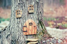 Transform all of the trees in my yard into little gnomes houses.