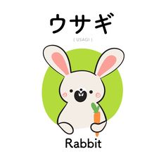 [13] ウサギ | usagi | rabbit