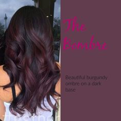 Burgundy Plum Hair Color With A Dark Base - Hairstyles For All Burgundy Plum Hair Color, Purple Hair, Dark Red Hair Burgundy, Pastel Hair, Green Hair, Dark Purple, Dark Brown, Hair Color And Cut, Hair Colour