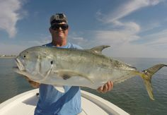 Sight Fishing For Giant Jack Crevalle Off St.  Augustine