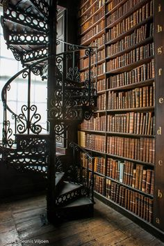 Trinity Library in Dublin such a massive collection of books there! It's so glorious!