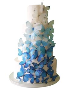 A white cake with ombre sugar butterflies is just gorgeous - and a good way of adding in two wedding themes without looking totally OTT.
