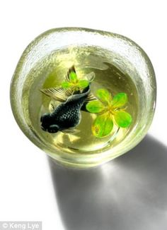 Like his inspiration, Fukahori, Lye mainly paints fish using the resin and acrylic technique