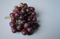 Raisins come from grapes, right? Yup, grapes are toxic to dogs too!