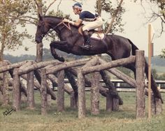2428 Best Legendary Horses Amp Riders Images Hunter Jumper