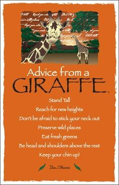 Animals have so much to teach us! ~ Advice from a Giraffe! ❤ like Stand tall, reach for new heights, stick your neck out, be head & shoulders ABOVE the rest! ❤