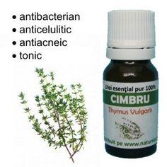 Ulei esential de Cimbru ml) Shampoo, Spa, Pure Products, Health, Plant, Health Care, Salud