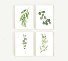 Gorgeous Botanical Prints {Free Printables} | The Turquoise Home