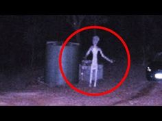 5 Grey Aliens Caught On Camera & Spotted In Real Life! Ancient Myths, Ancient Egyptian Art, Ancient Artifacts, Ancient Book, Ancient Greece, Les Aliens, Aliens And Ufos, Ancient Aliens, Scary Ghost Videos