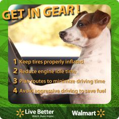 Sustainable car care tips from our friends at the Environmental Defense Fund. #Walmart #Sustainability