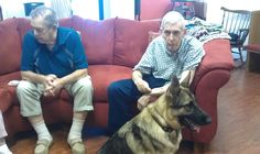 Coco doing Therapy Dog work in Margate, Florida. For Therapy Dog Training information - http://www.policek9training.us/articles/dog-training-tips/therapy-dog-training/   #TherapyDogsRock