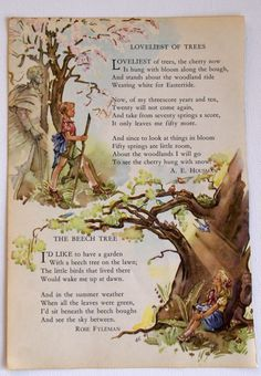 Vintage Children's Book  Tree illustration  by BettyJanesTreasures, $8.00 -- love everything, illustration and words around, the coloring