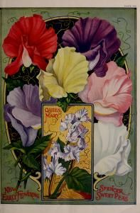 Childs' rare flowers vegetables and fruits / - Biodiversity Heritage Library