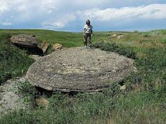 gigantic petrified seed - proves that trees were once much larger than the Redwoods of California.