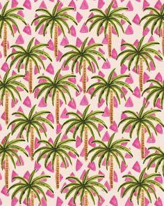 Palmeras verano tropical