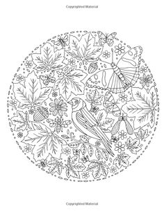 Autumn Garden Colouring Book Amazonde De Ann Black Fremdsprachige