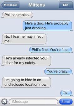 Mittens The Cat Would Like A Roomba NOW Please Catster - Dogs able text 30 hilarious texts dogs