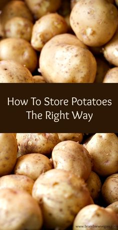 cooking tips - How To Store Potatoes the Right Way Where To Store Potatoes, Storing Onions And Potatoes, Protein Cookies, Beignets, Chocolate Chip Cookies, Potato Storage, Onion Storage, Storing Fruit, Fresh Potato