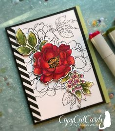 CopyCatCards – Hand-Crafted Cards and Crafts Homemade Greeting Cards, Homemade Cards, Altenew Beautiful Day Cards, Poppy Cards, Altenew Cards, Copics, Prismacolor, Card Tutorials, Pretty Cards