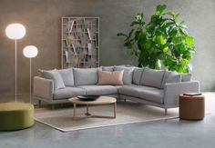 118 Best Modular Sofas For Lounge Images Living Room Inspiration