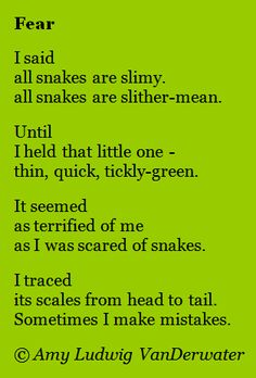 A poem about fear accompanied by a mini lesson about writing about how feelings change. Also a focus on syllables and rhyme scheme. From The Poem Farm, a site full of poems and poem mini lessons and poetry ideas - www.poemfarm.amylv.com