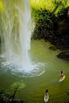 Paddle boarding to a waterfall in New Zealand..except for the occassional Bull Shark...this looks amazing!