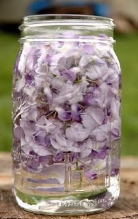 wisteria water - the petals on wisteria are edible!