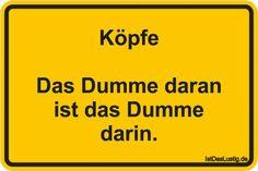 Köpfe Das Dumme daran ist das Dumme darin. ... gefunden auf https://www.istdaslustig.de/spruch/2516 #lustig #sprüche #fun #spass