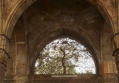 Sidi Sayeed Mosque, Gujarat, India - construite en 1573 par un responsable Sidi (ie indien d'origine africaine).