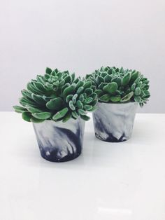 Medium sized marbled cement pots / planters for plants, cactuses, succulents in white and black marble porcelain concrete