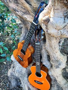 Kanilea kcs high g tuning & Anuenue Lion Lout low g. Ukulele Pictures, Ukelele, Lion, Music Instruments, Get Well Soon, Leo, Musical Instruments, Lions