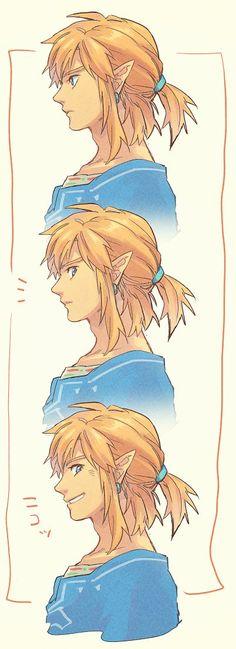 Legend Of Zelda Memes, The Legend Of Zelda, Legend Of Zelda Breath, Animal Crossing, Pretty Art, Cute Art, Botw Zelda, Ac New Leaf, Link Art
