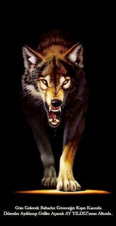 Trendy Tattoos, New Tattoos, Small Tattoos, Tattoos For Women, Disney Minimalist, Night Tattoo, Small Owl, Tribal Women, Wolf Howling