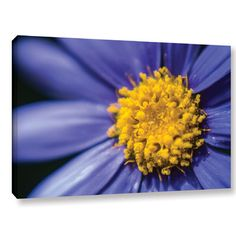 """Zipcode Design Don't Sneeze Photographic Print on Wrapped Canvas Size: 24"""" H x 36"""" W x 2"""" D"""